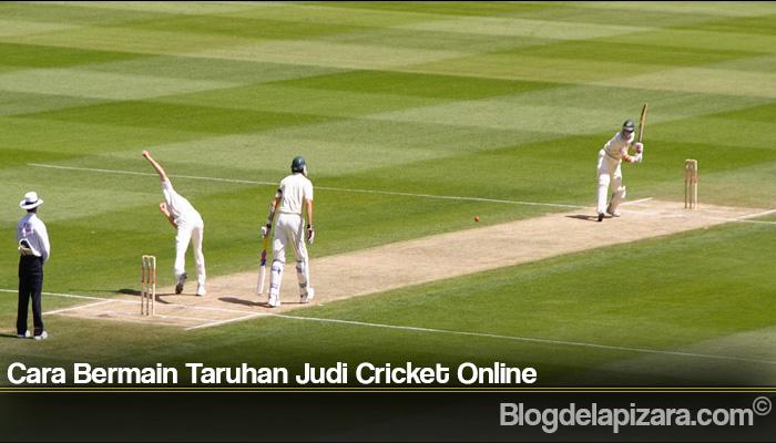 Cara Bermain Taruhan Judi Cricket Online