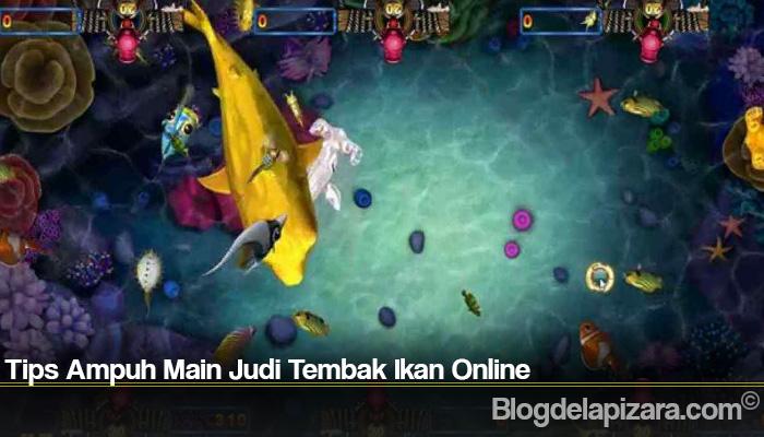 Tips Ampuh Main Judi Tembak Ikan Online