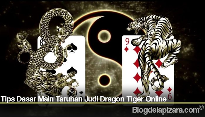Tips Dasar Main Taruhan Judi Dragon Tiger Online